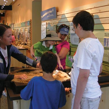 Walking Mountains Science Center is Now Open!