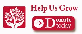 Donate-Icon