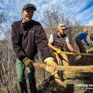 Walking Mountains' staff works with USFS trail crews to restore a portion of Buck Creel Trail.