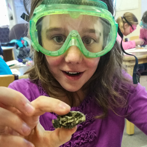 Girls in Science Owl Pellet Dissection